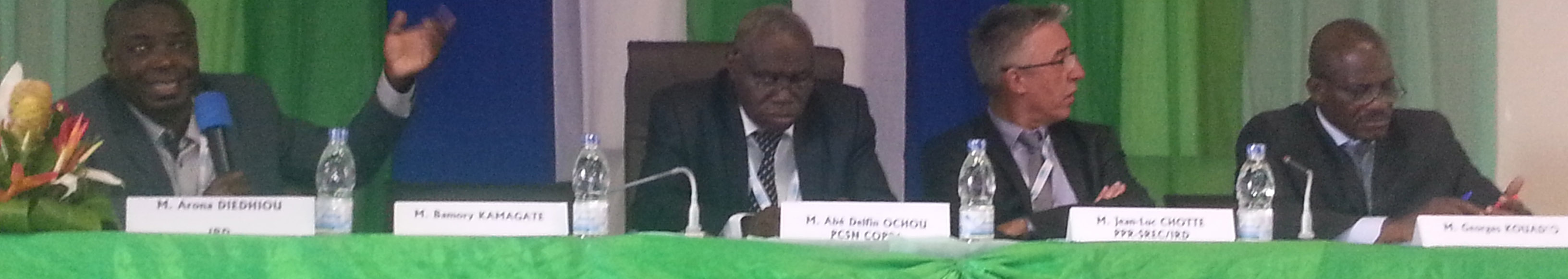 COP 21: Abidjan s'active